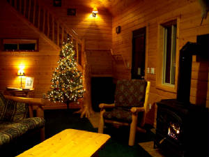 Traverse City Christmas Thanksgiving Vacation Rent